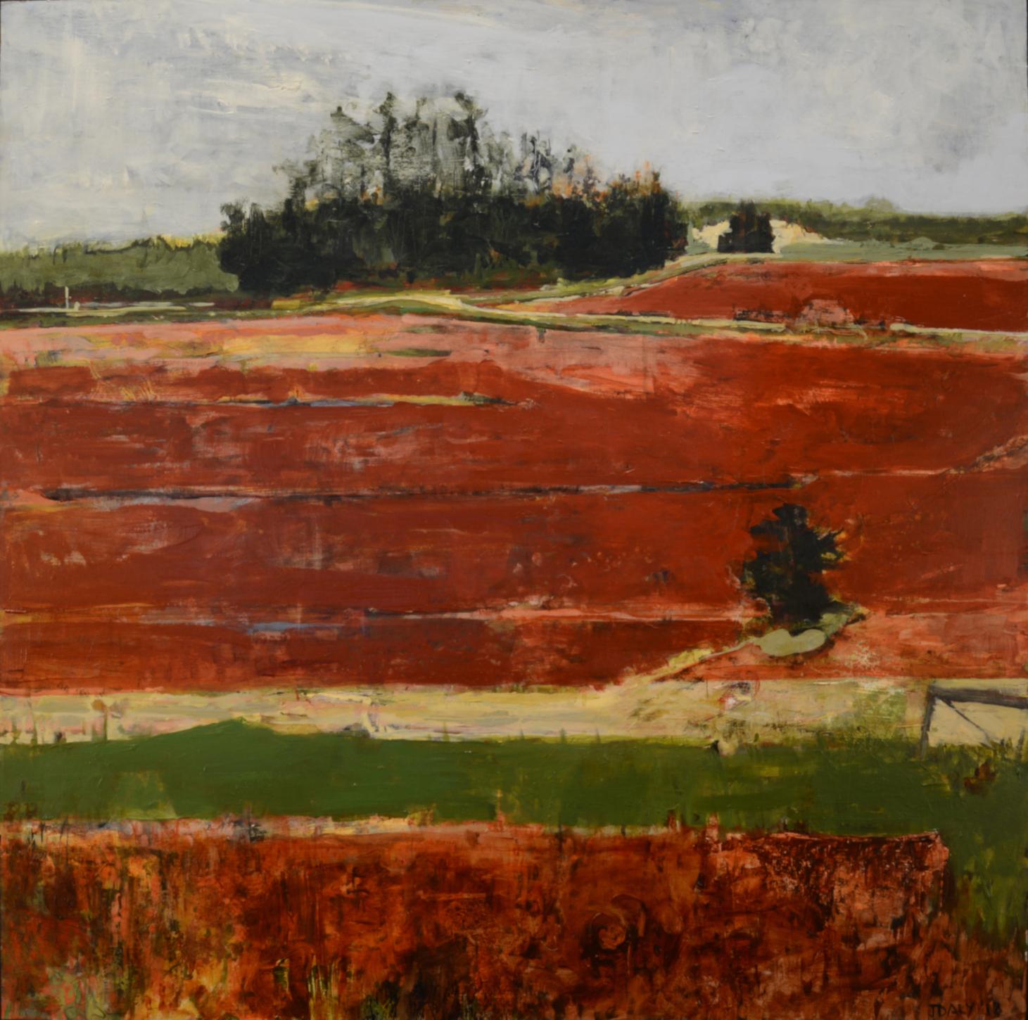 John Daly,  Red Brook XIV , Acrylic on panel, 36x36
