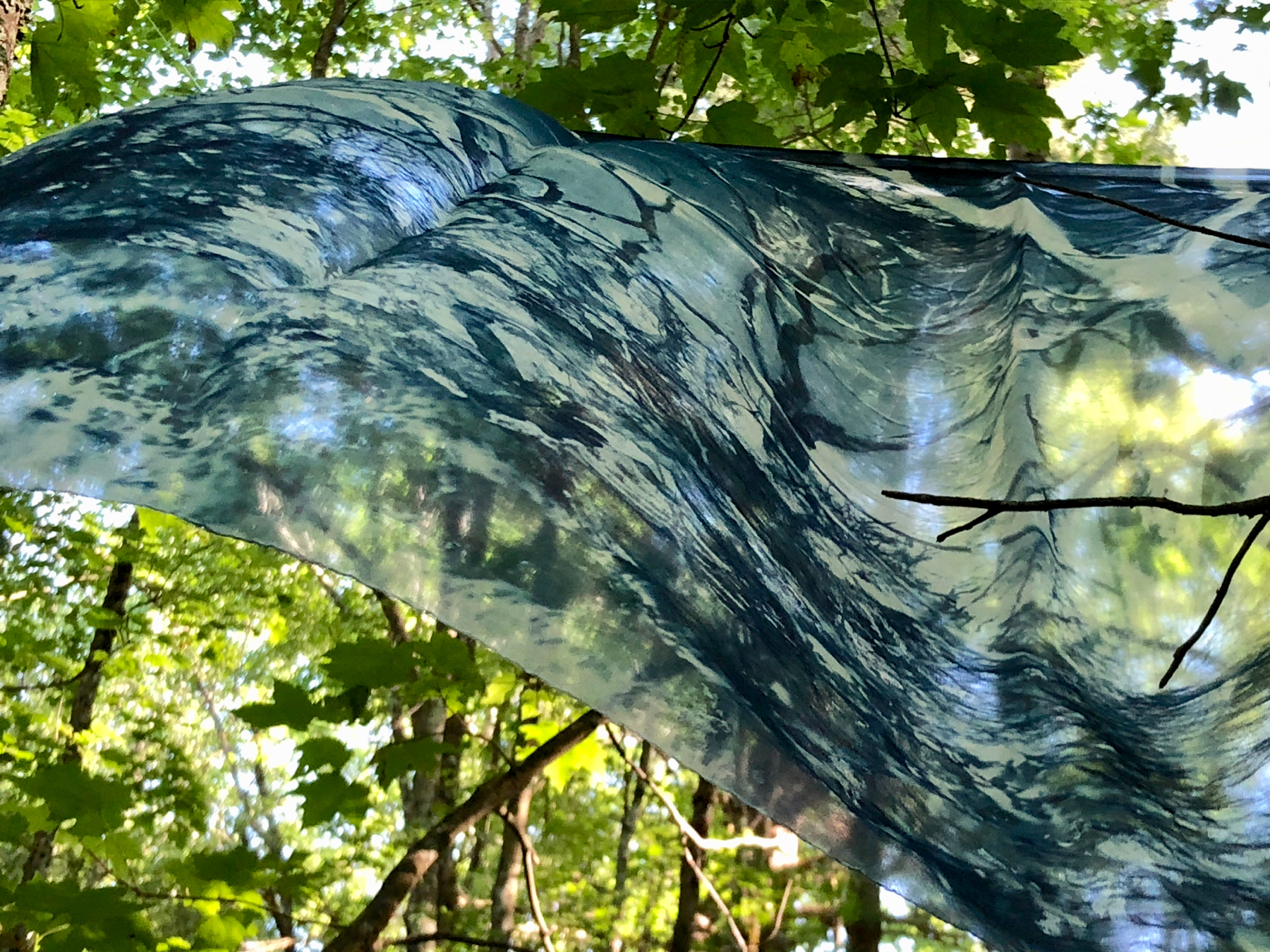 Natural Consequences (Installation view),  cyanotype on silk organza by Marie Craig