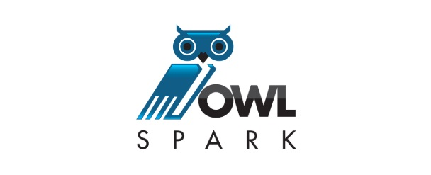 OwlSpark Annual Summer Accelerator  May to August annually  Bayou Startup Showcase - August  (Start-Up Team Workshop)