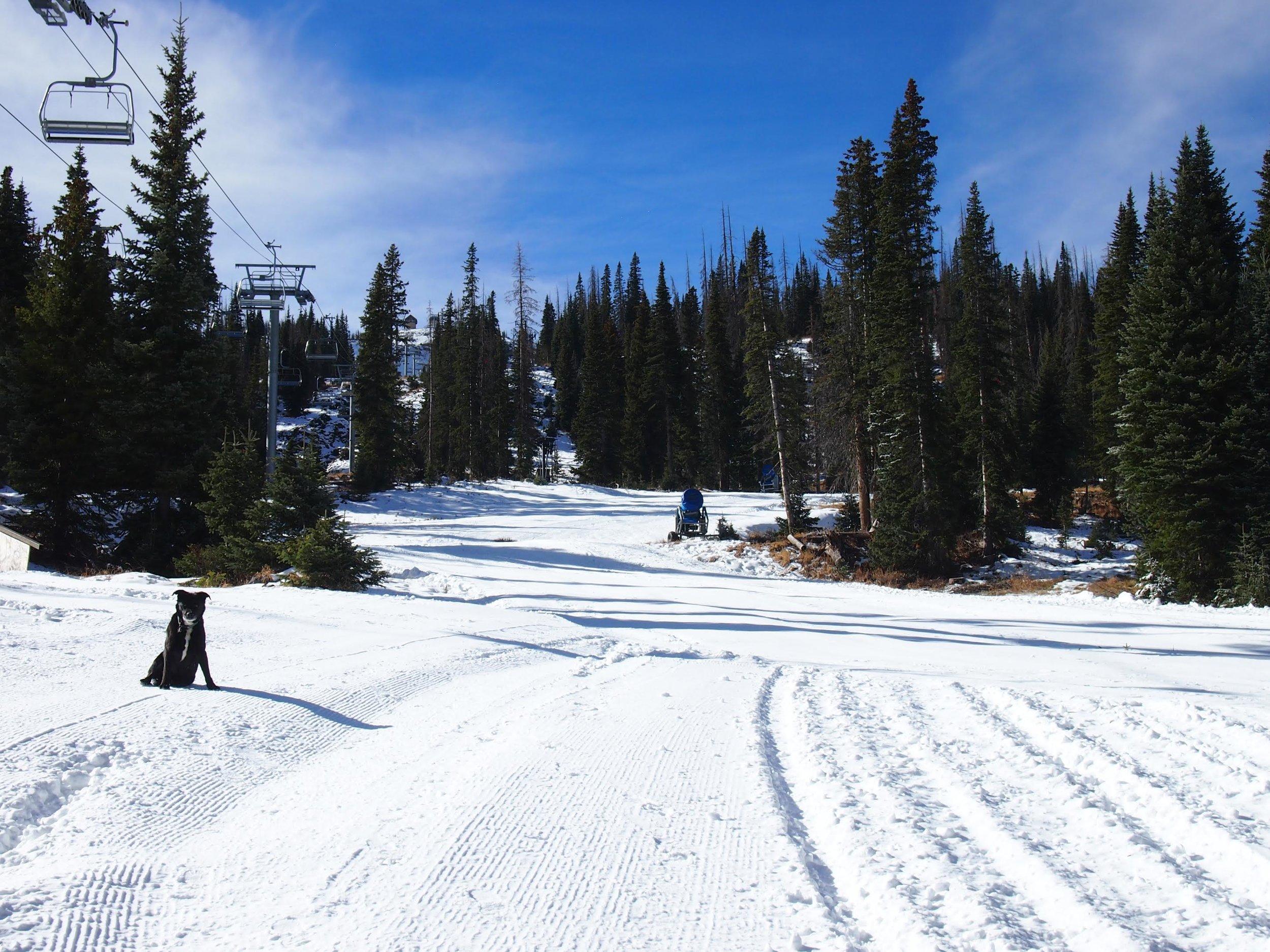 P: Rosanne H. Pitcher, Wolf Creek Ski Area