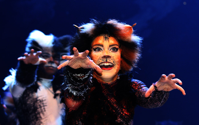CATS-Curtain-Call-650-1.jpg