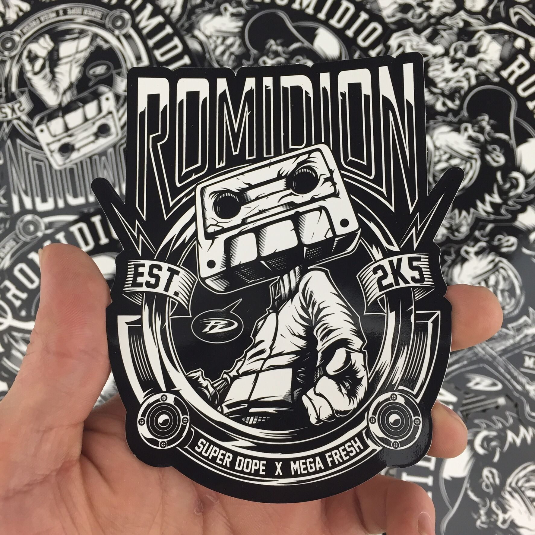 romidion3.jpeg