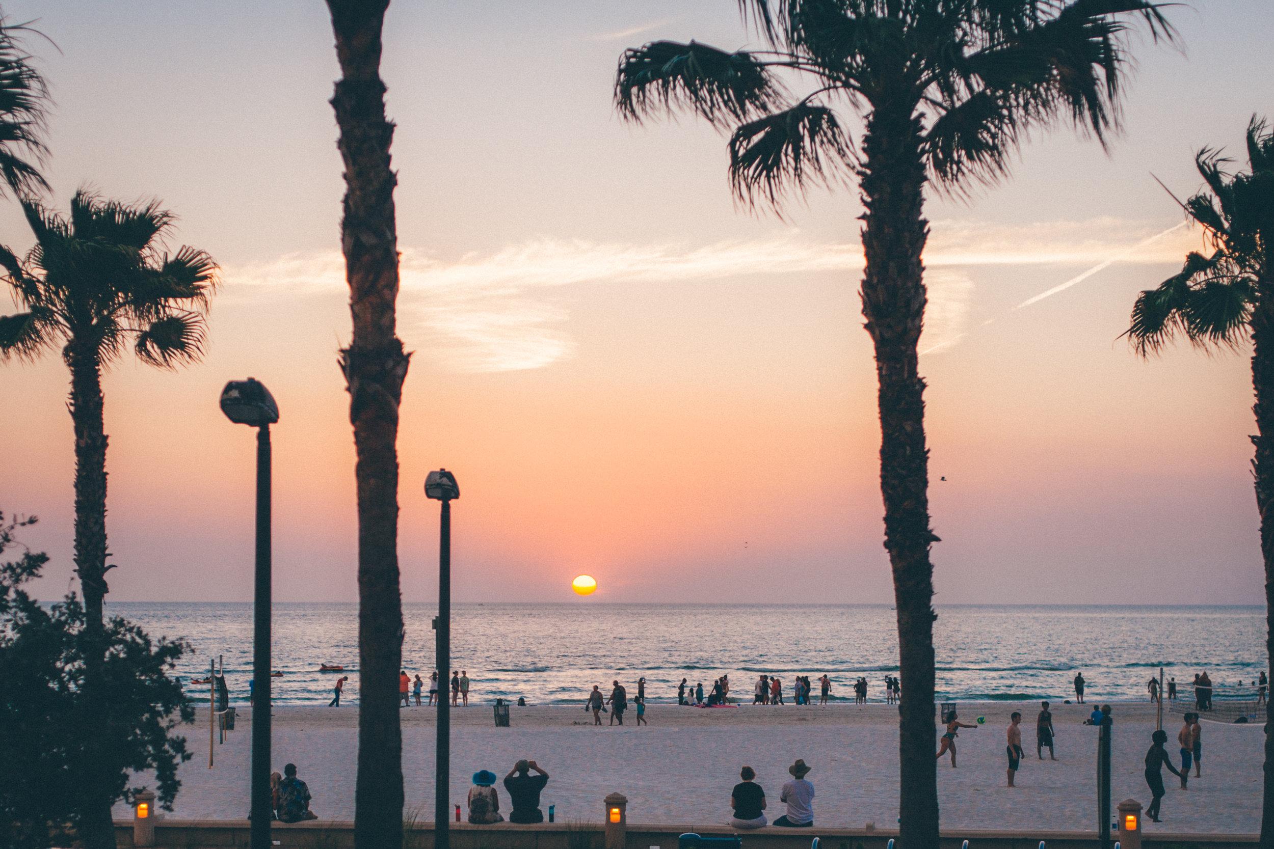 This Jenn Girl - Ocean Hai Wyndham Grand Clearwater Beach 7