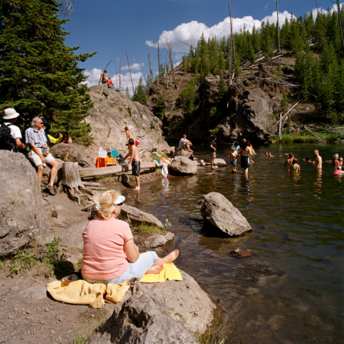 River Swimmers, Yellowstone National Park, WY