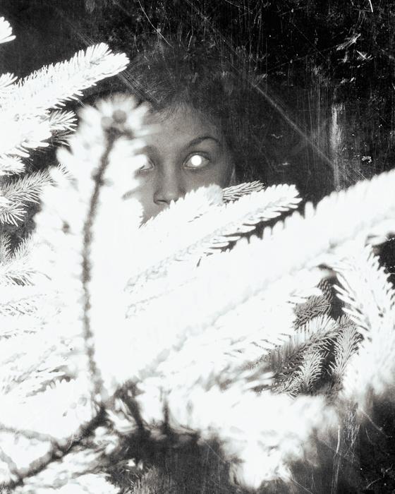 Silvered Eye
