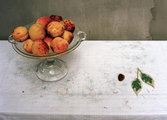 Irma's Peaches, 2010