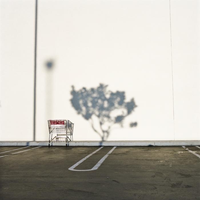 """""""Park"""" by Rachel Wolfe (http://www.rachelwolfe.com)"""