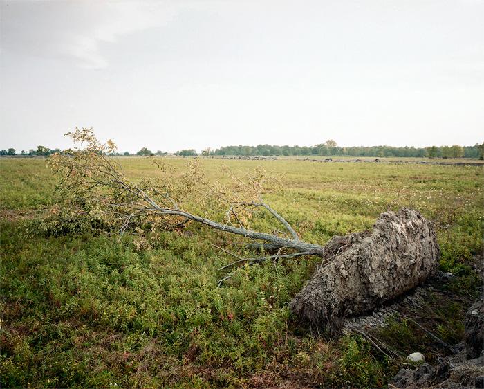 """""""Grassland 45061_1"""" by Phil Underdown (http://www.philunderdown.com)"""