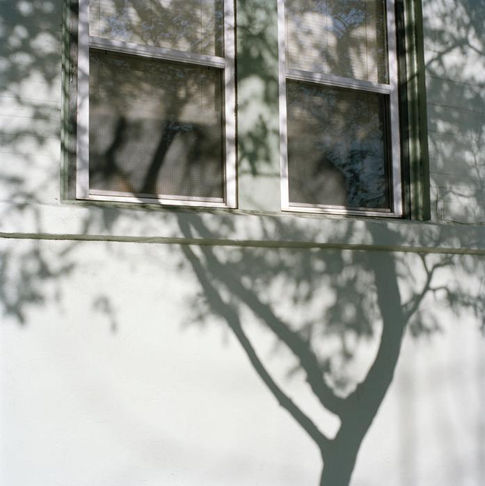 Tree Shadow, California, 2009