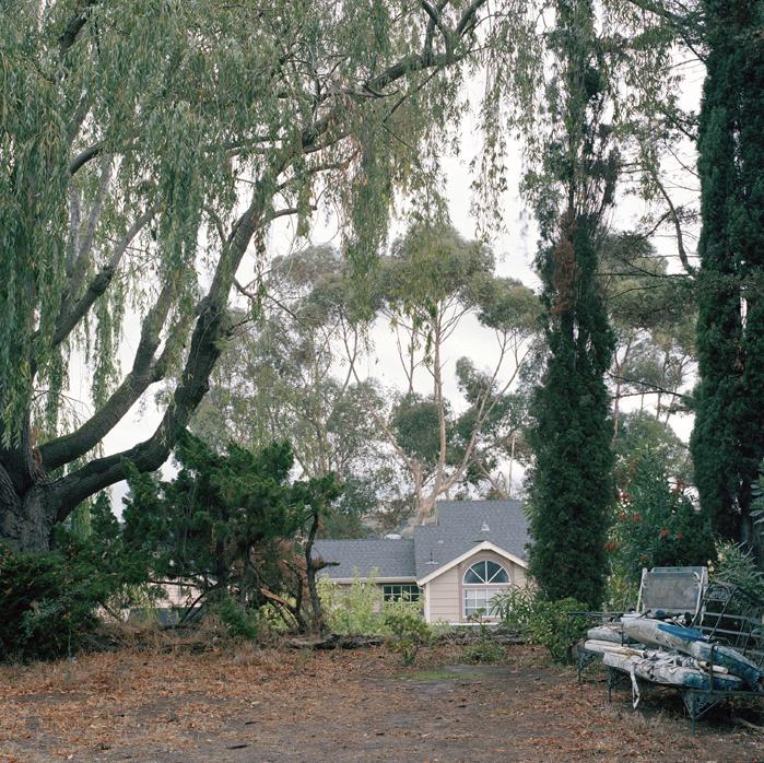 Uncle David's Backyard, California, 2010