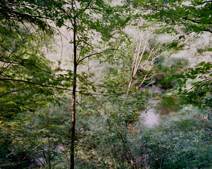 Cushman Brook [view #7], 2011