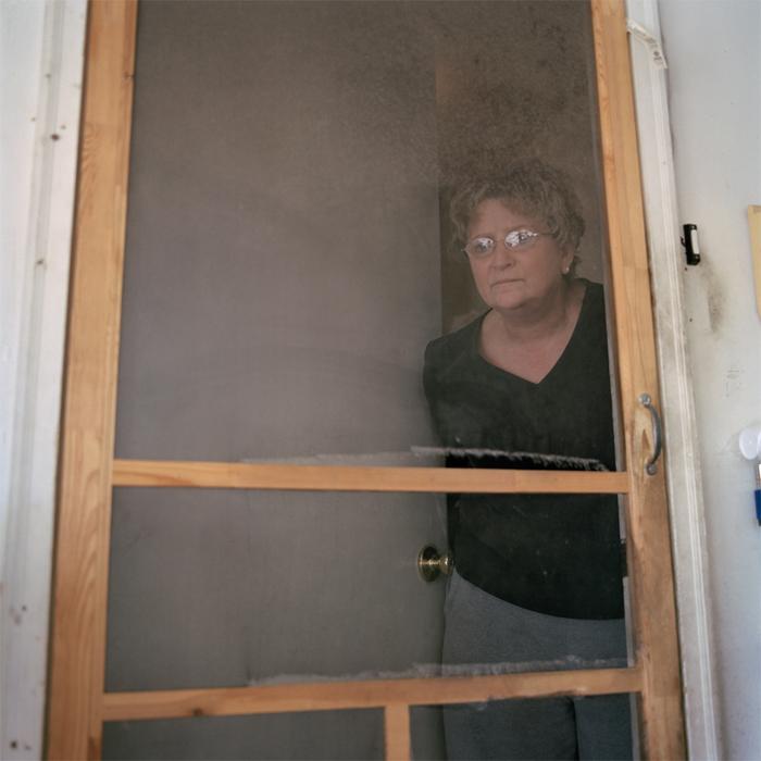 Garage Screen Door (2011)