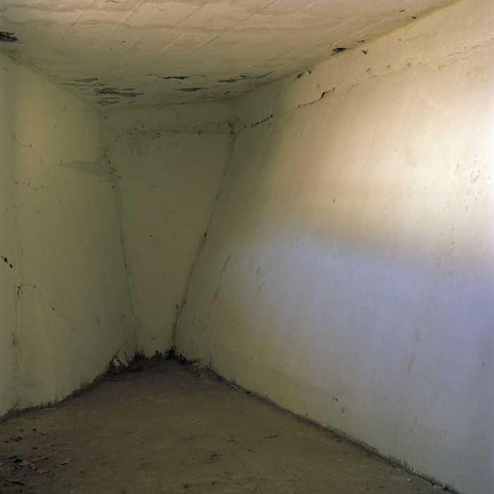 Julio's Cell