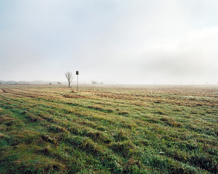 Grassland 160