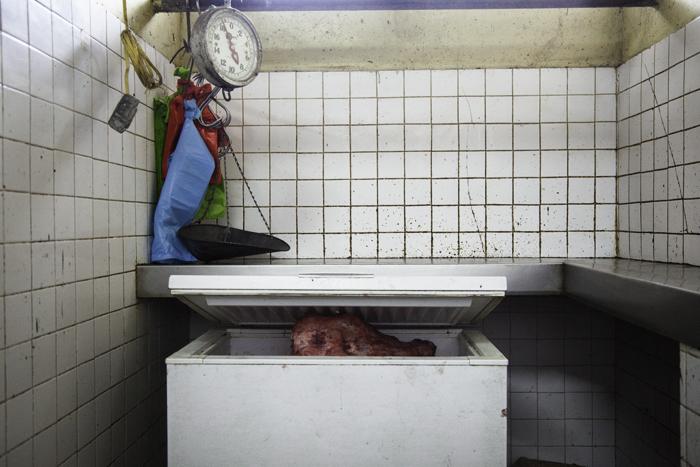 Boquete Freezer