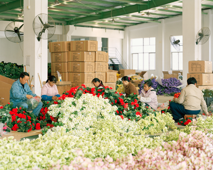 Flowers & Workers I