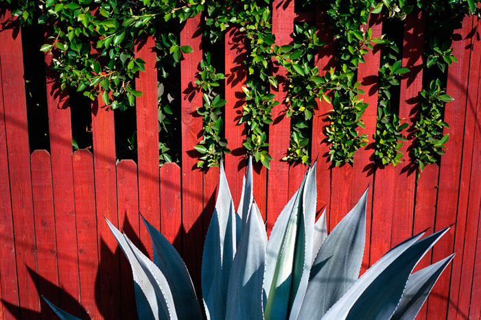 Orange Fence