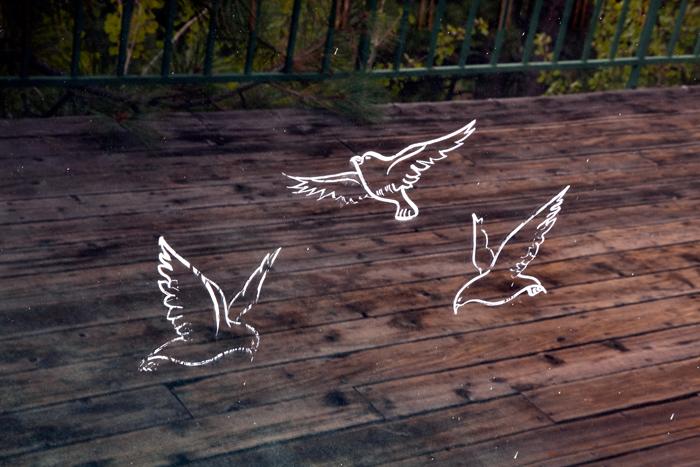 Wedding Chapel / Birds