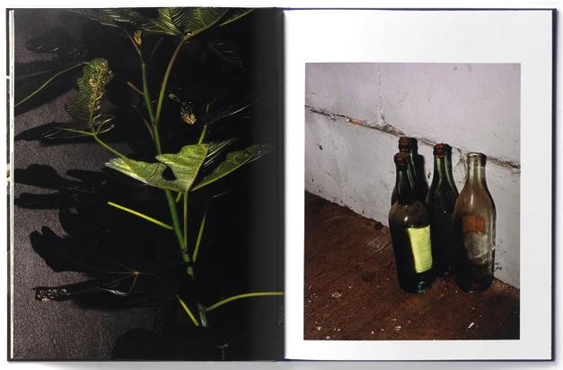 nothing but home, sebastien girard, fraction magazine, photography magazine