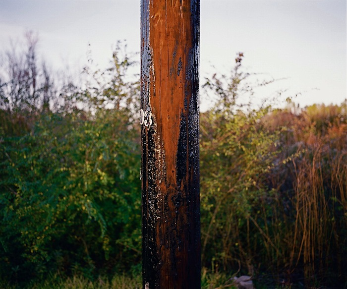 Creosote soaked Pole and Field, BRLA 2008