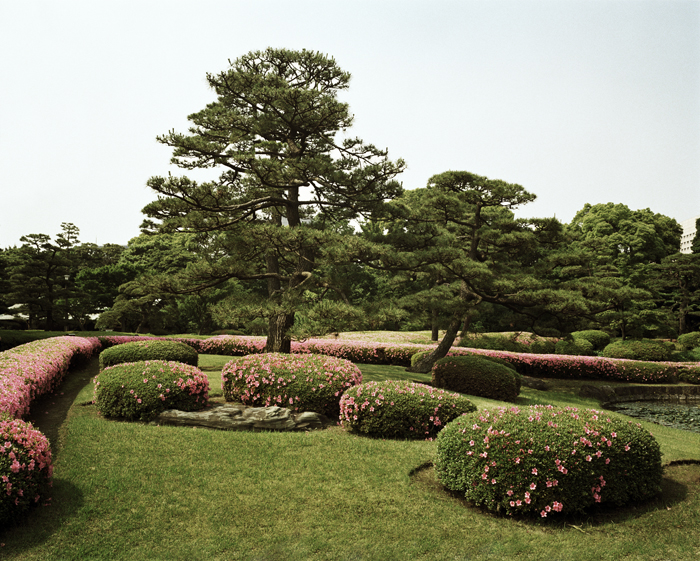 Imperial Palace Gardens with Pink Flowers, Tokyo, 2006