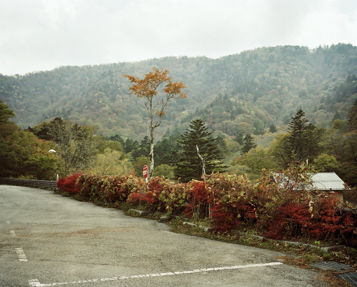 Fall Colors, Nikko, 2009