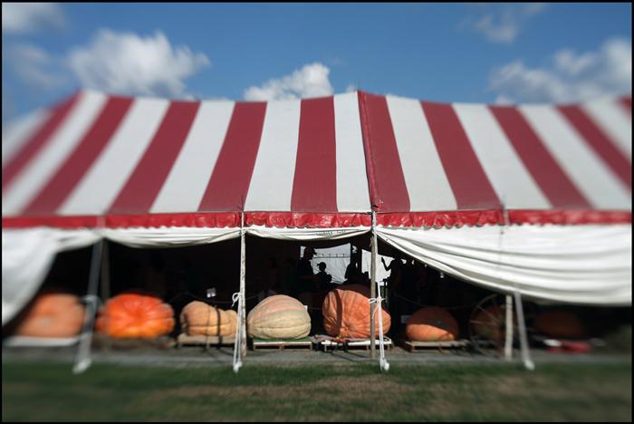 State Fair, Near Doswell, VA