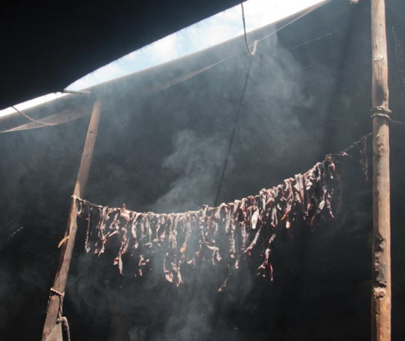 Smoke, Dashika