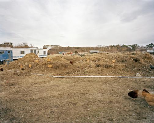 David Welsh (Martha's Vineyard, MA)  Compost Mound