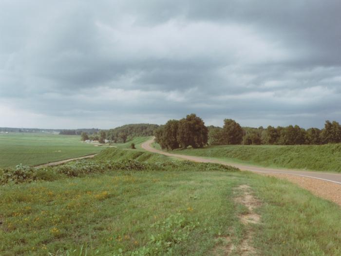 Delta View Road