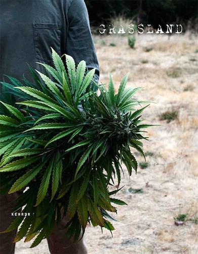 grasslandscover.jpg