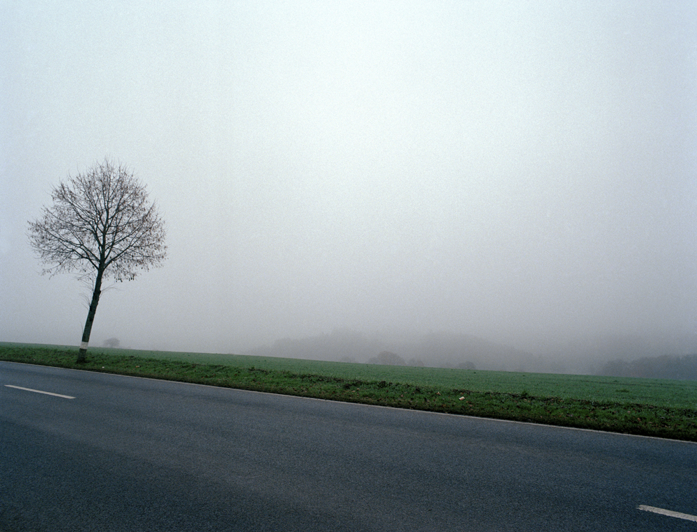 015.Feugère-Foggy morning.jpg