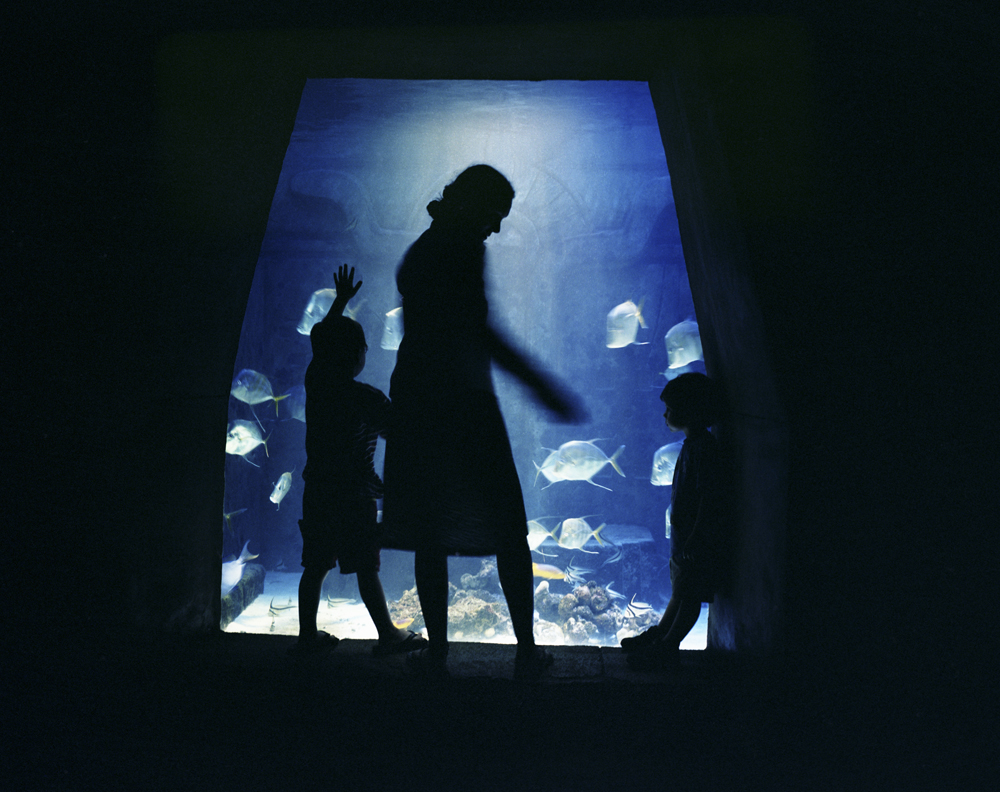 The Aquarium, Paradise Island, 2004