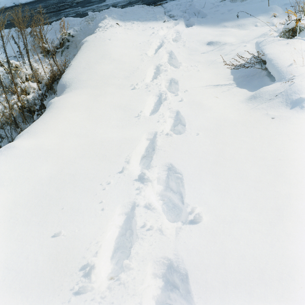 """Ashioto (a footstep)"" : We can only hear the sound of someone crunching through the snow."