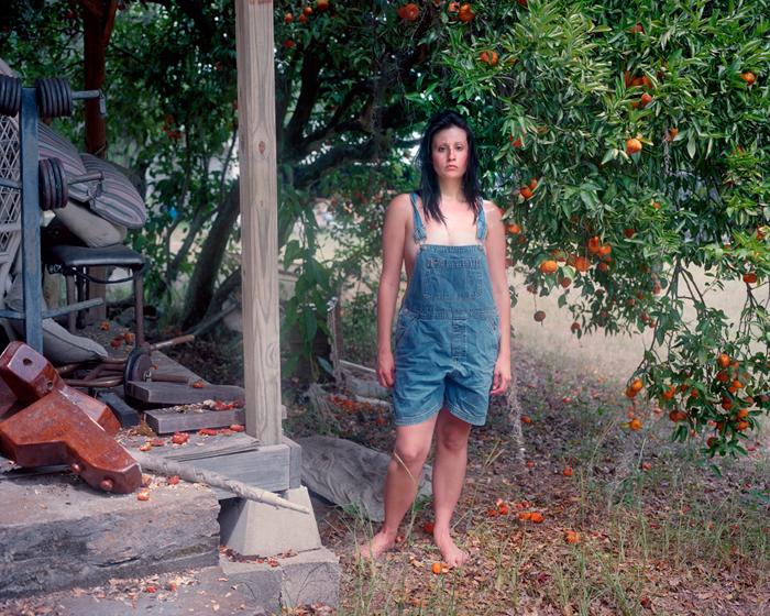 Under the Tangerine Tree by Noelle McCleaf