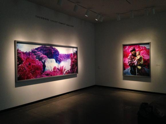 Richard Mosse Installation, Portland Art Museum