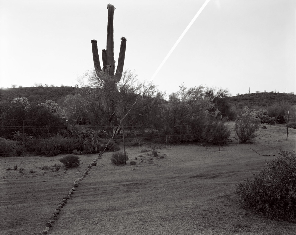 Saguaro Moonrise, Lost Dutchman State Park, Arizona