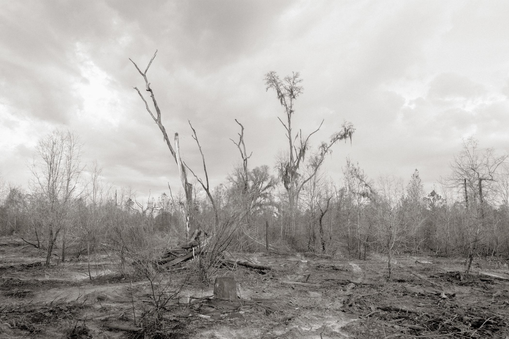 Colin Kelly HWY, Madison County, FL (1)