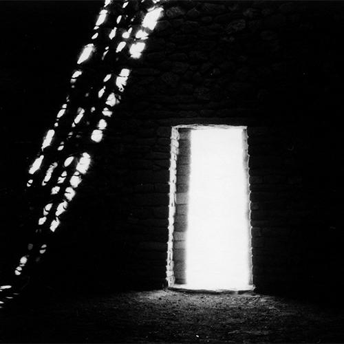 Dark Messengers  by Tarrah Krajnak