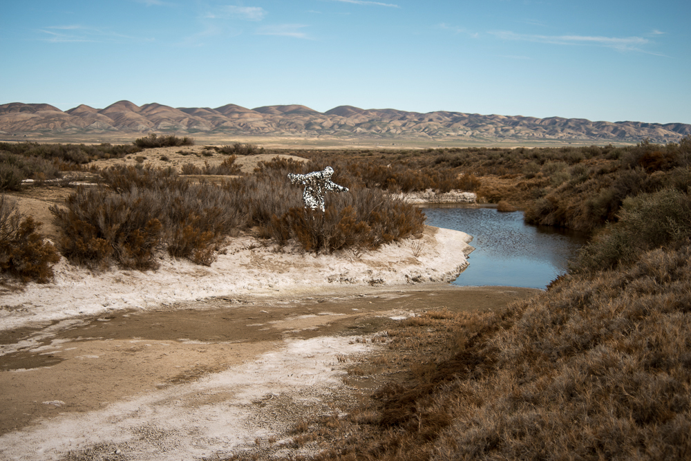 Oscillator in Carrizo Plains National Monument (2015)