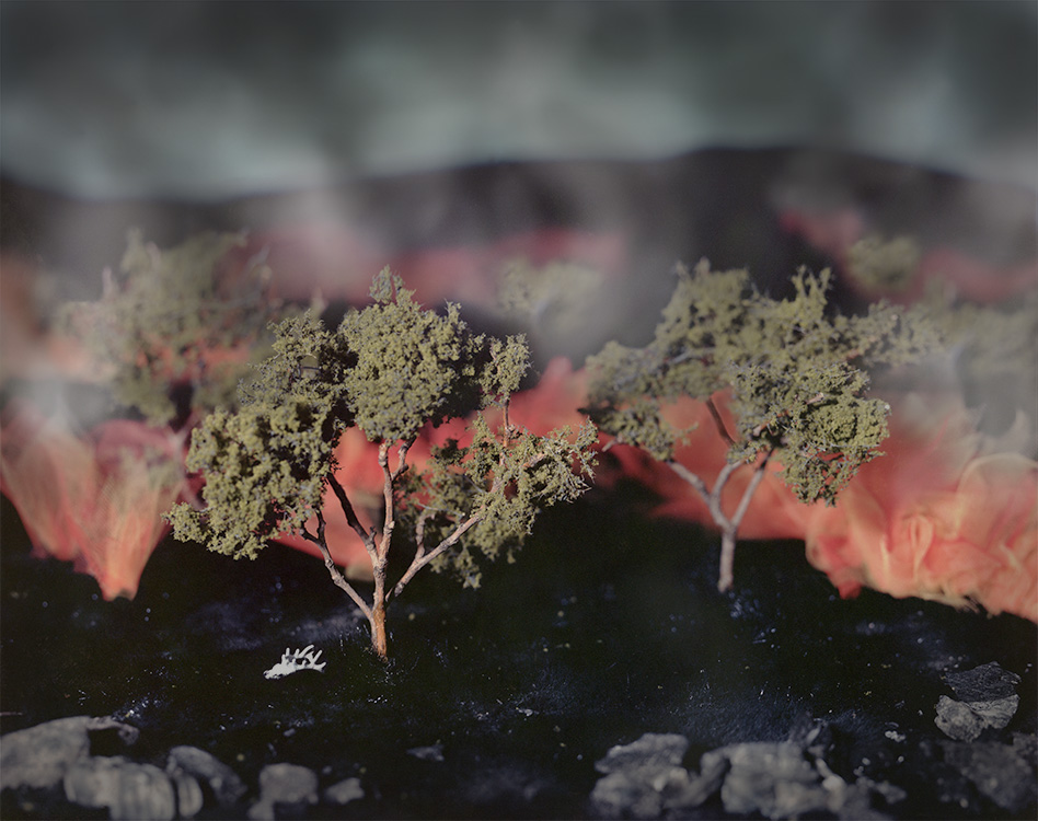 Savanna Burn