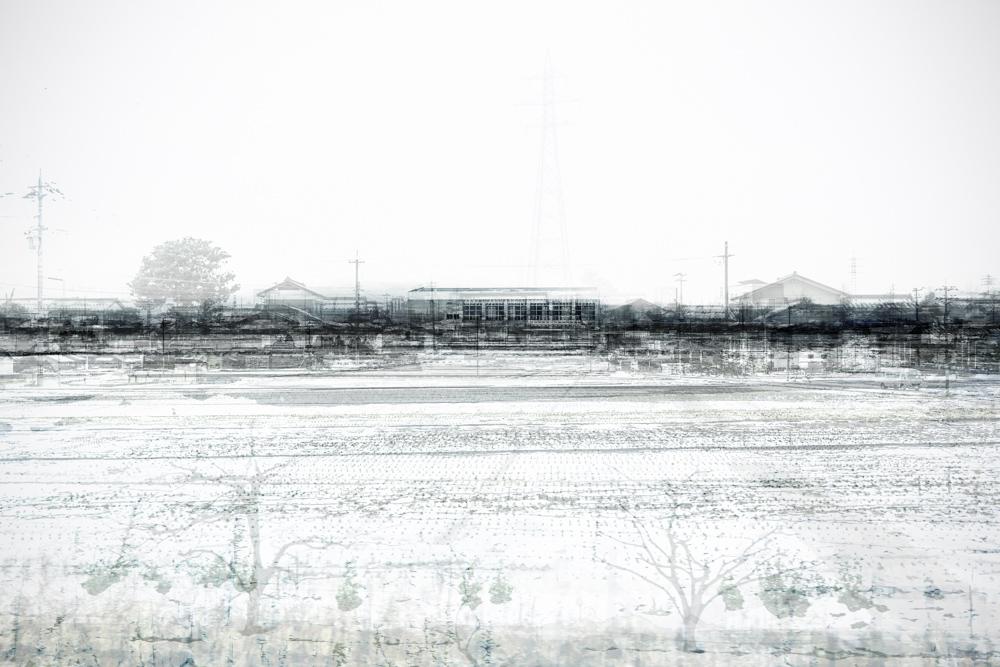 Fukui, Fukui, 2016