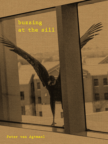 Leo Hsu reviews  Buzzing At The Sill  by Peter van Agtmael