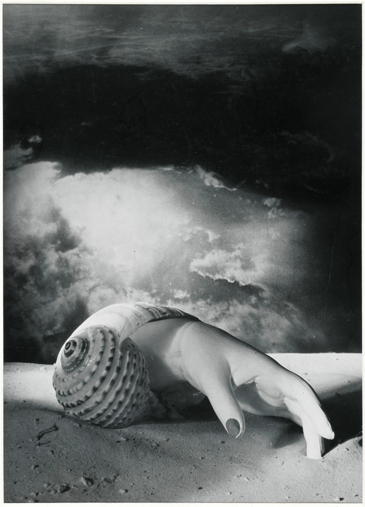 Hand emerging from shell,  1934