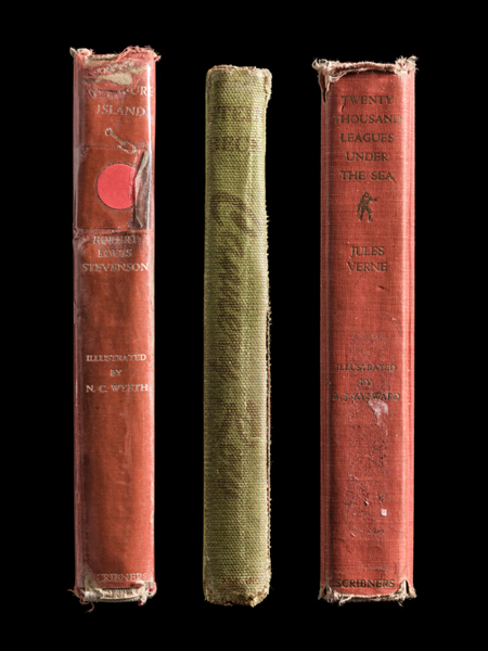 Multiple Classic Spines  ©Kerry Mansfield