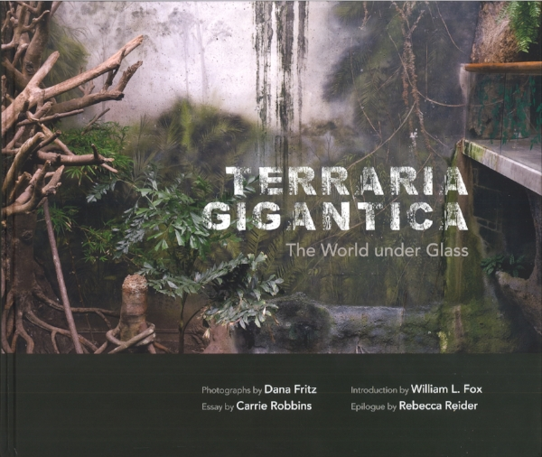 Lau ren Greenwald reviews  Terraria   Gigantica  by Dana Fritz