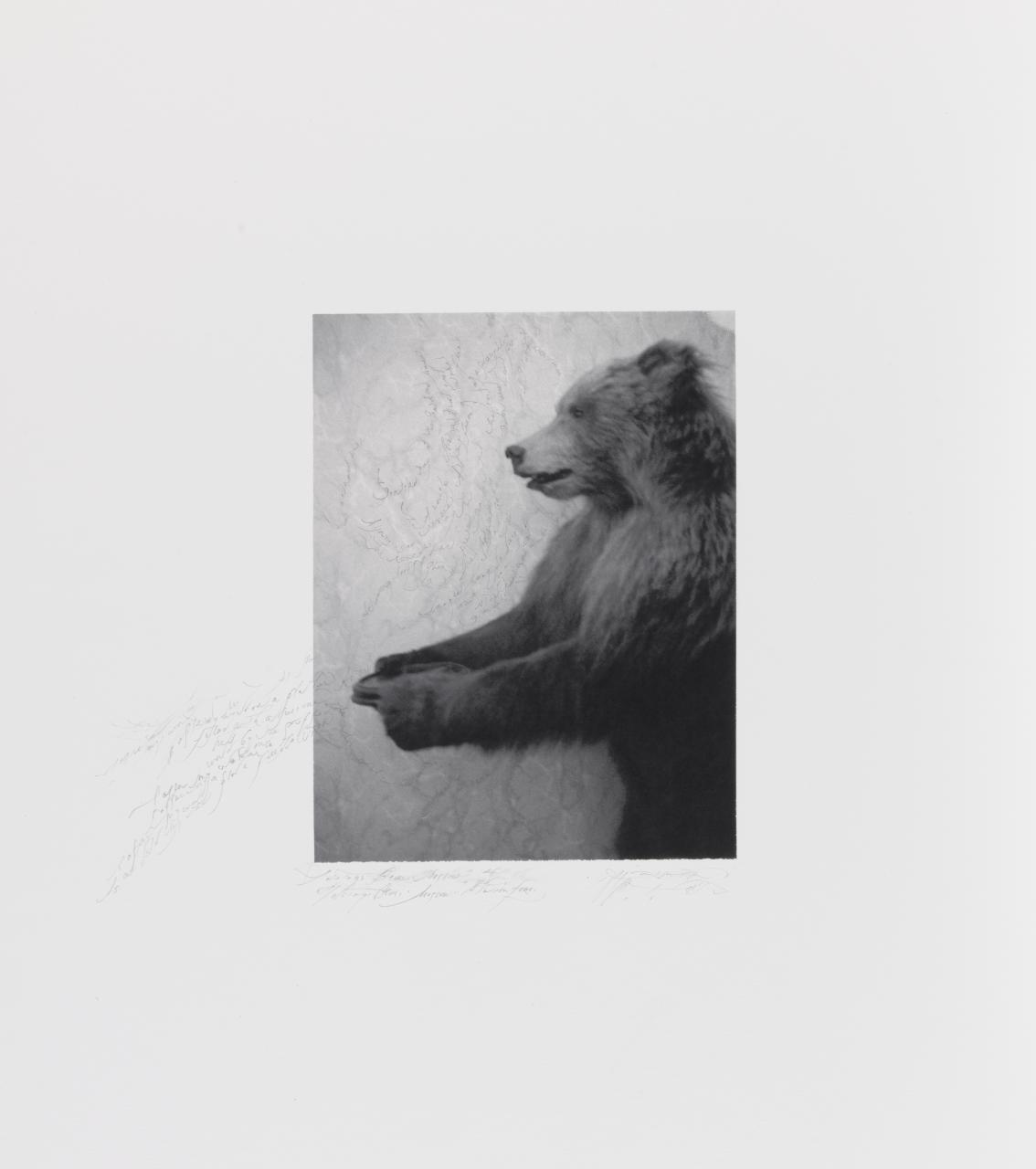 Patti Smith, American (b. 1946).  Tolstoy's Bear, Moscow , 2016. Inkjet print with pencil, 7 7/16 × 5 3/4 inches. The Nelson-Atkins Museum of Art, Kansas City, Missouri. Gift of the Hall Family Foundation, 2016.51.5.