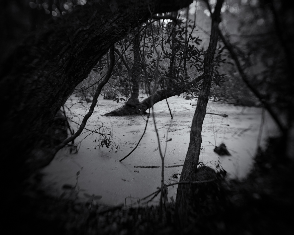 008_Greenberg_Untitled_1319.jpg