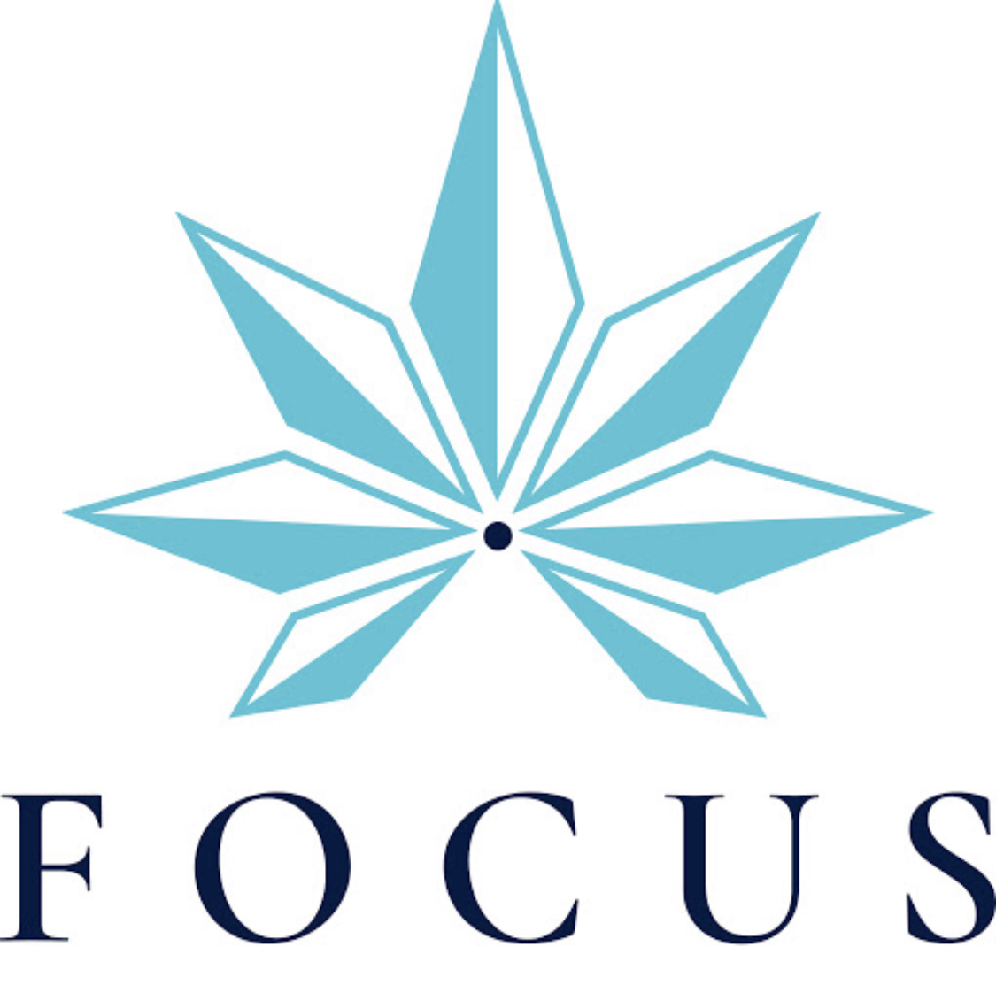 Take control of your life and return balance to your body's natural functions! Focus Hemp Co's CBD-rich Hemp Oil Products contain all the vital cannabinoids, plant compounds, terpenes and minerals needed to elevate your body function! At Focus Hemp Co. we are American made, lab tested and quality driven. We pride ourselves on integrity and providing our consumers with honest products targeted to enhance their daily lives. Through handpicked organic sourcing and industry-leading extraction processes; we are able to deliver all of the naturally occurring benefits of the hemp plant, in our CBD-rich full spectrum products.