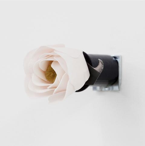 Naoki-Sutter-Shudo-Disagreeable-Rose-Bodega.jpg